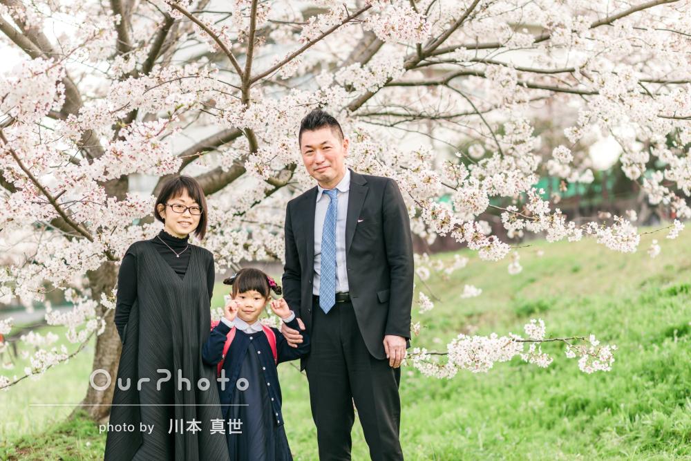 「希望通り桜が満開の場所で撮影」公園で入学式の前撮りと家族写真の撮影