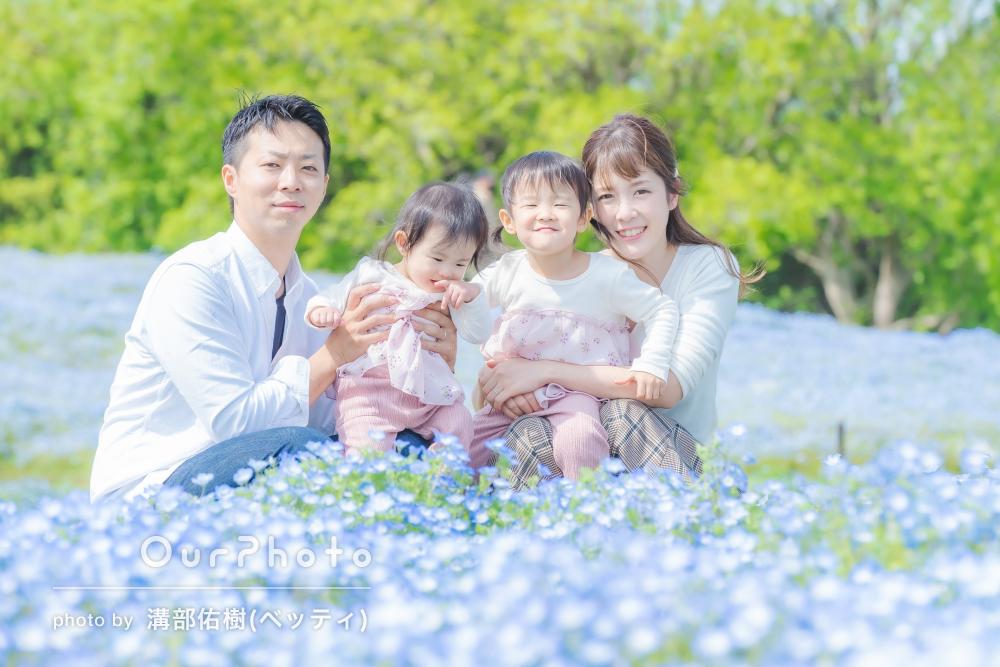 「構図や色合いも好きな感じ」ネモフィラに囲まれて家族写真の撮影