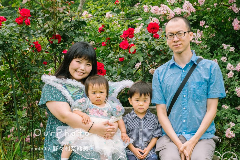 バラが美しく咲く公園ではしゃぐ子どもたちが可愛い!家族写真の撮影