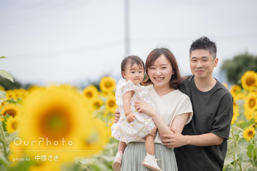 「想像以上に華やかな写真」ひまわりが似合う大輪の笑顔で家族写真の撮影