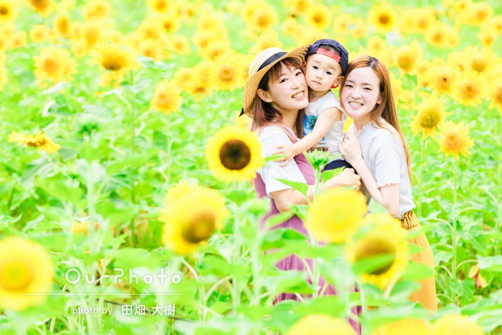 「いい写真を撮ってもらう事ができました」ひまわり畑で家族写真の撮影