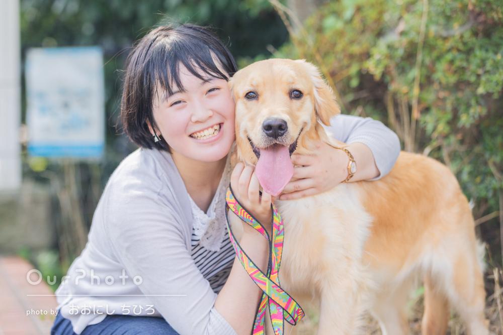 元気一杯!ゴールデンレトリバーの子犬と飼い主さんのペット写真の撮影