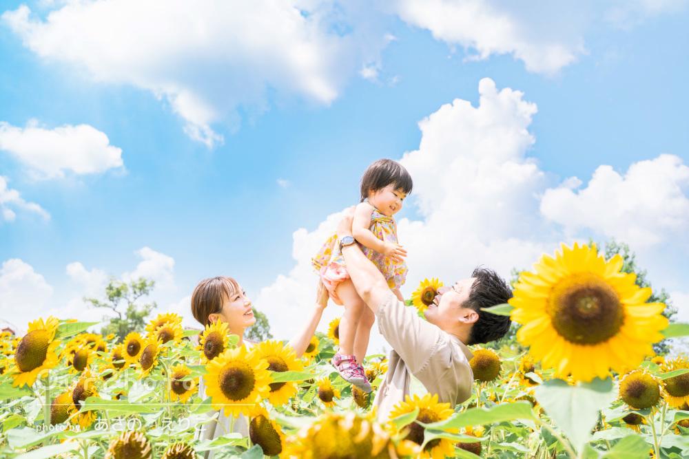 「ほんとに感謝でいっぱいです」ひまわり畑で誕生日記念の家族写真の撮影