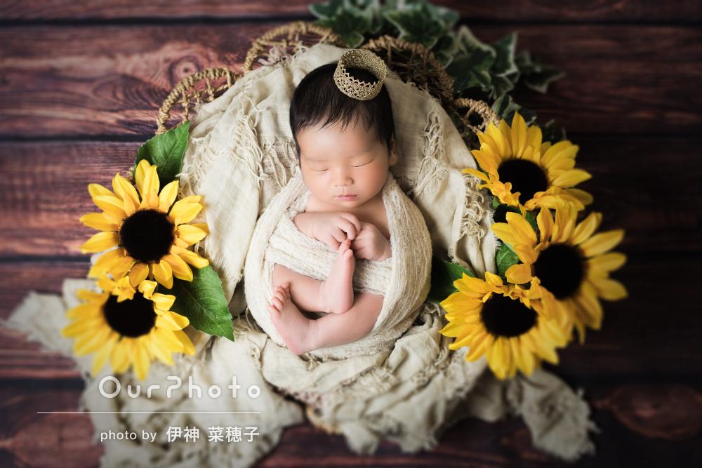 ひまわりの花に囲まれて夏らしくかわいいニューボーンフォトの撮影
