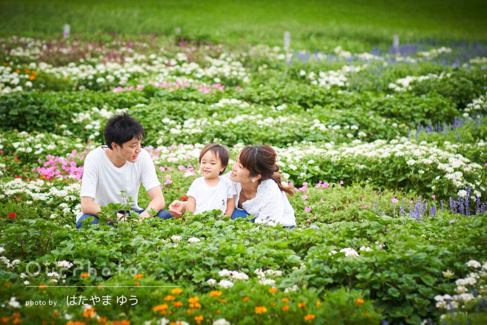 「充実すぎるほどの内容」潮風が気持ちいい公園で家族写真の撮影