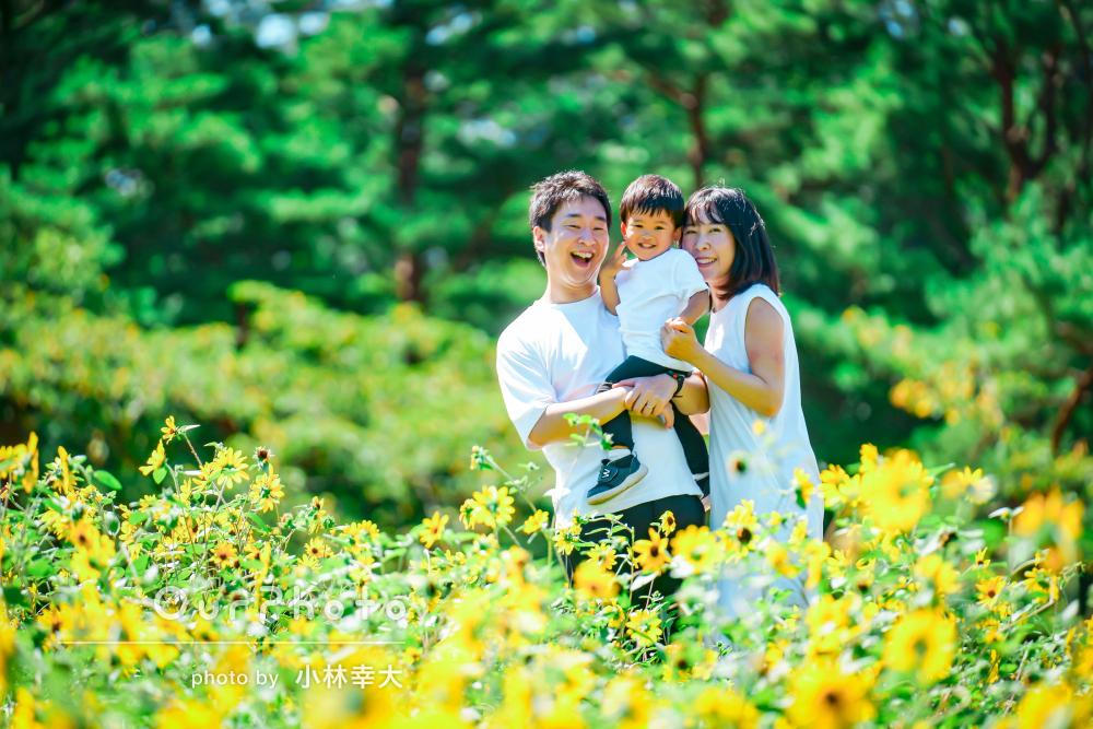 「終わった時には汗だくで一生懸命撮影」ひまわり畑で家族写真の撮影