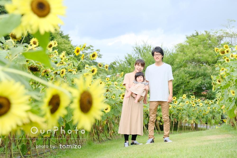 ひまわり畑の中で楽しそうな笑顔!リンクコーデで家族写真の撮影