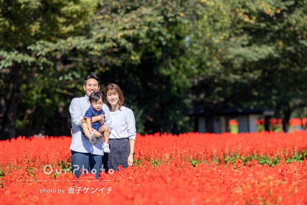「思い出の写真を撮って頂く事が出来」綺麗なお花畑で家族写真の撮影