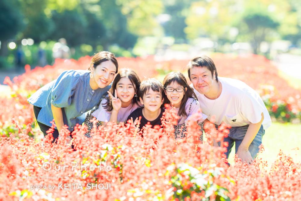 「どんな場面でもキラキラと美しい1枚に」公園で笑顔の家族写真の撮影