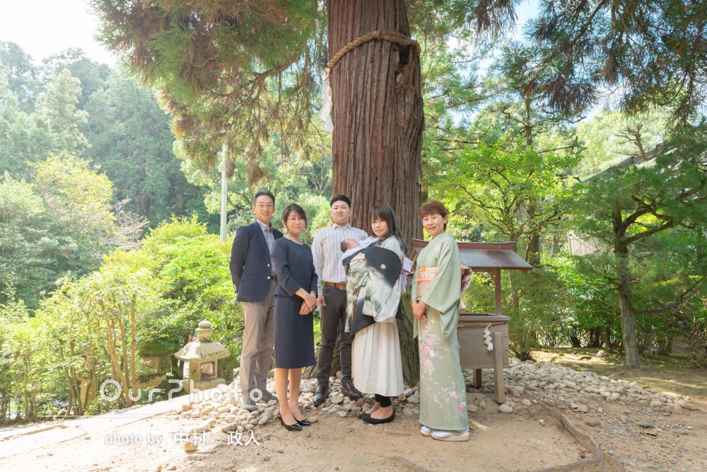 大木のある神社で赤ちゃんを見守る目線が素敵!男の子のお宮参りの撮影