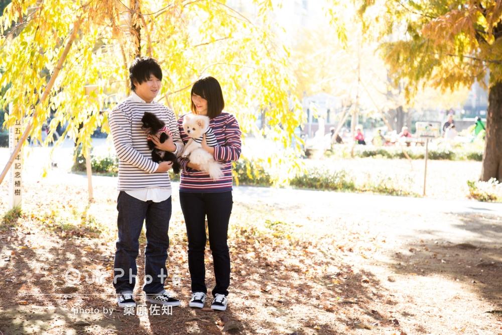 「あたたかい素敵な写真」ペットのワンちゃんと一緒に年賀状用の家族写真撮影