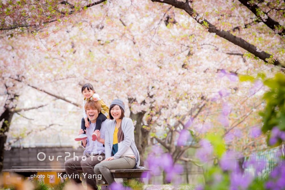 「とても素敵」春爛漫!桜吹雪の中で家族写真の撮影