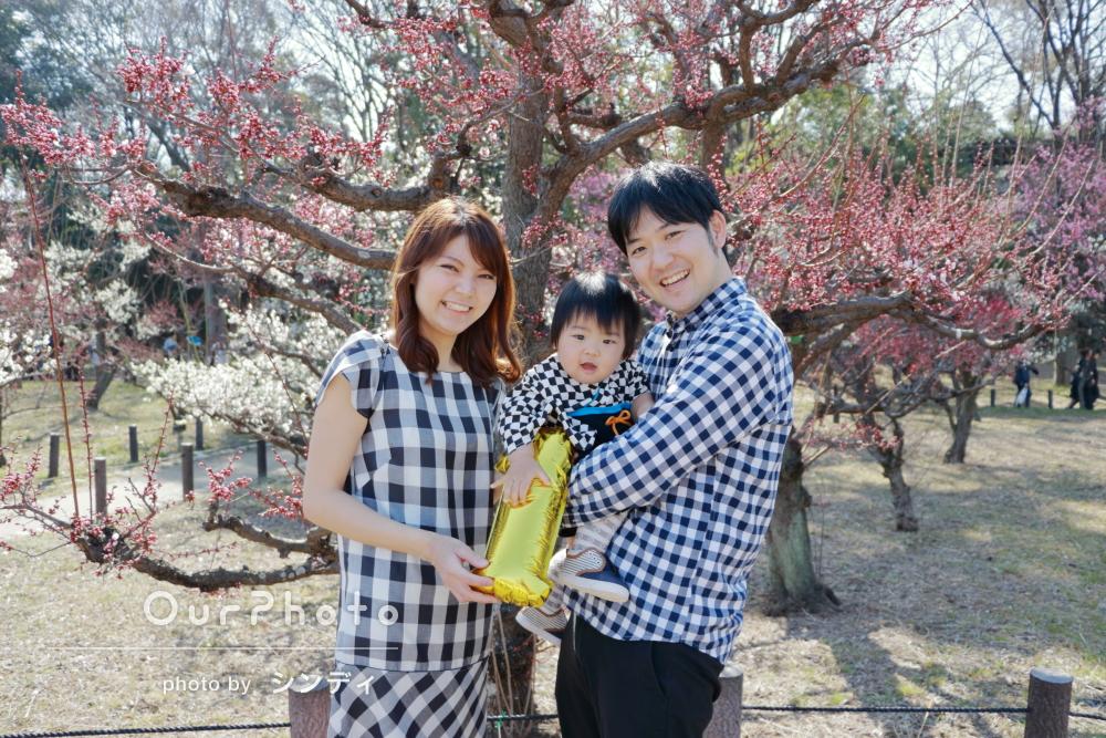 満開の梅と!お子様の1歳記念に家族写真の撮影