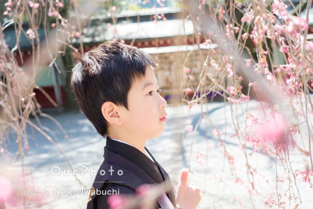 「子どもたちも楽しそうでした」春の神社で七五三の前撮り