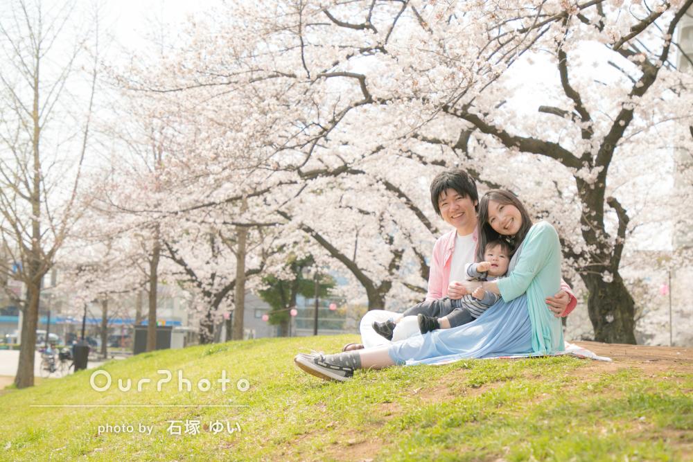 「優しい明るい雰囲気」桜満開!家族写真の撮影