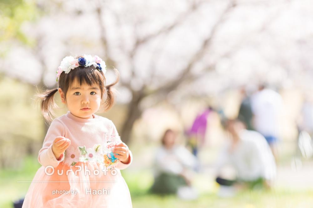 お子様の2歳を記念して!「祖父祖母も大喜び」桜舞う家族写真の撮影
