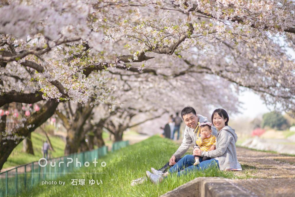 「娘の1歳の誕生日に大好きな桜とのショットを」撮影してほしい!