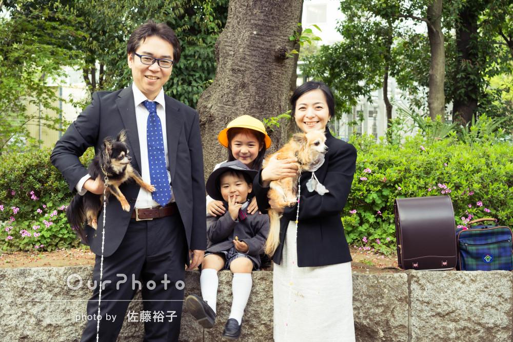 姉弟の入学・入園の記念に!ペットのワンちゃんも一緒に家族写真の撮影