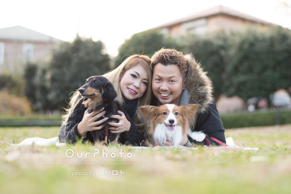 「愛犬2匹も一緒に撮影。とても素晴らしい写真に大満足」カップルフォトの撮影
