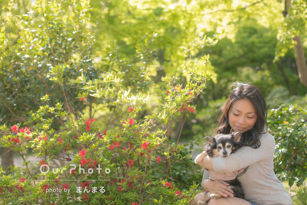 「自然な表情を撮ってもらえました」大好きな愛犬と記念撮影