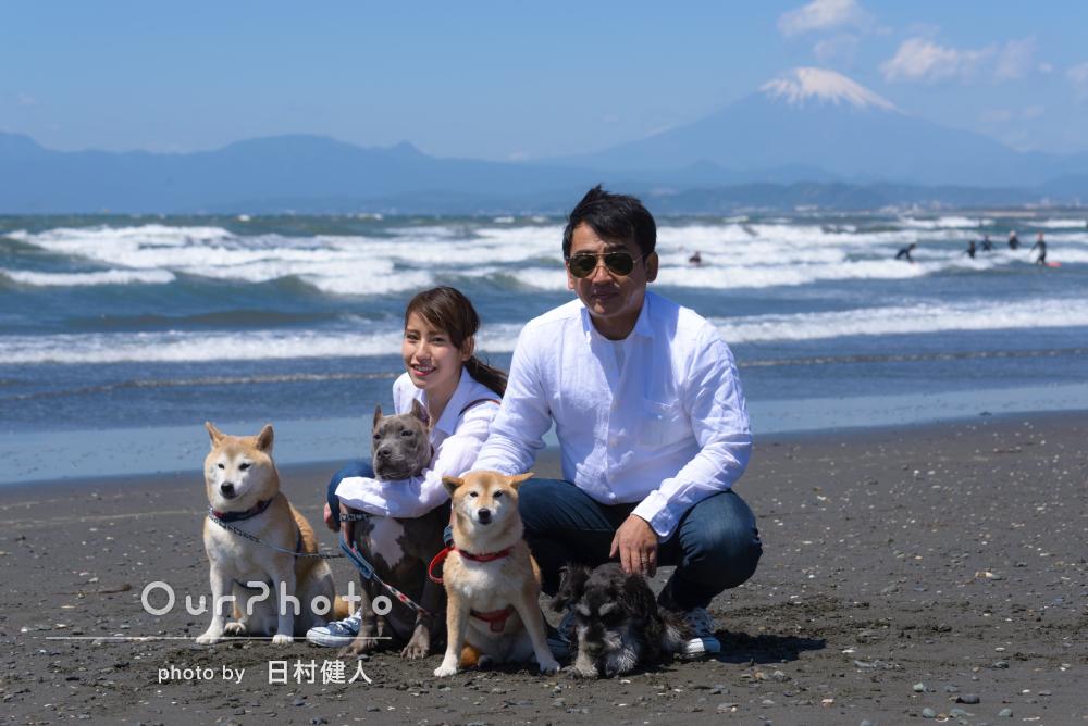 「初めてでしたが楽しく」たくさんのワンちゃんも一緒に家族写真の撮影