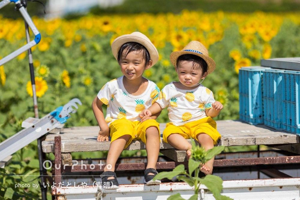 「ひまわり畑で家族で撮れたことは夢だった」夏いっぱいの家族撮影