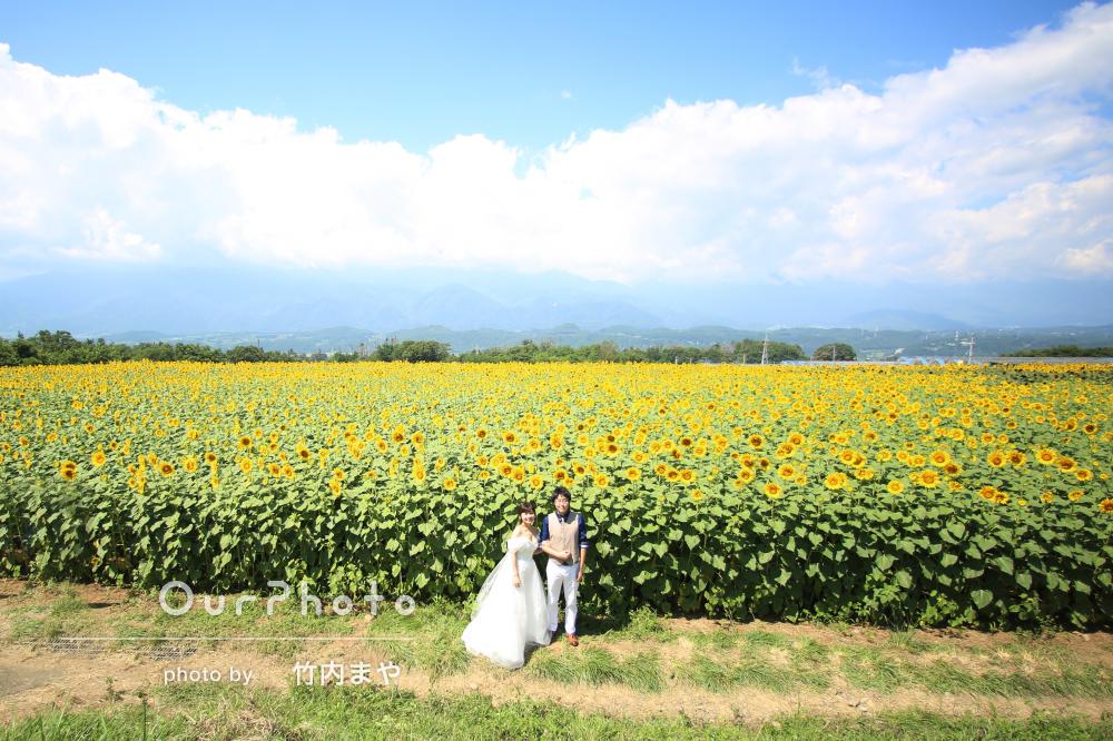「結婚式用に写真を!」ひまわりが咲く中でウェディングフォト