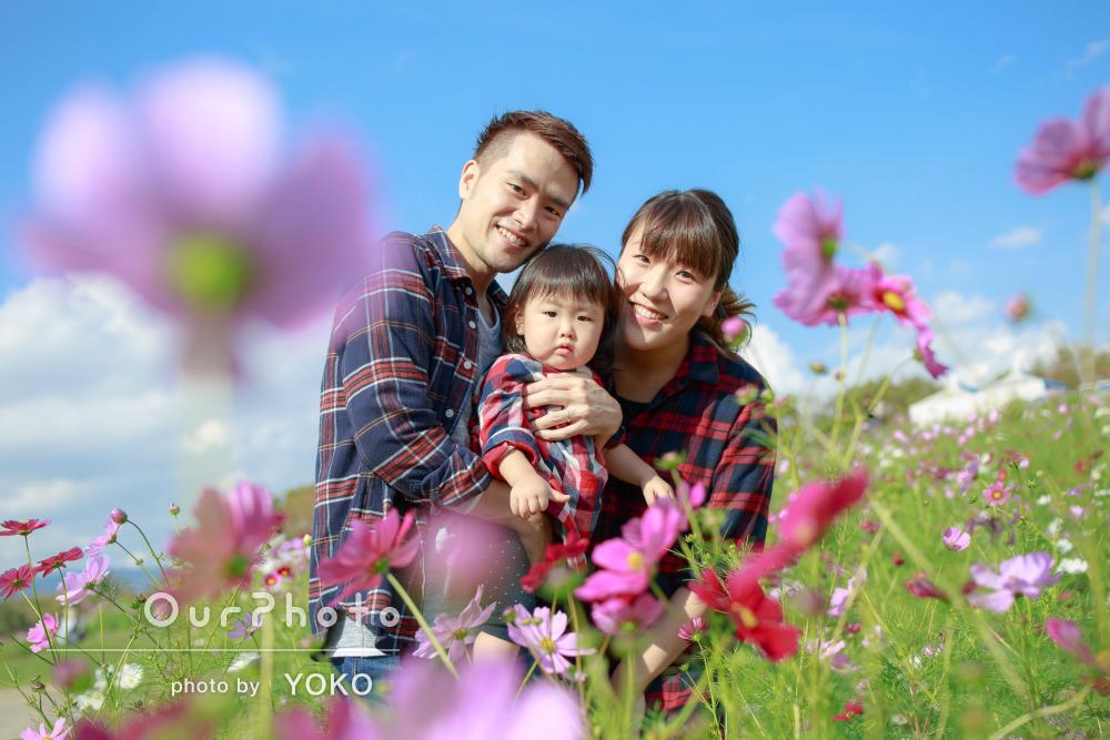 今しか撮れない家族の自然な姿を!家族写真の撮影