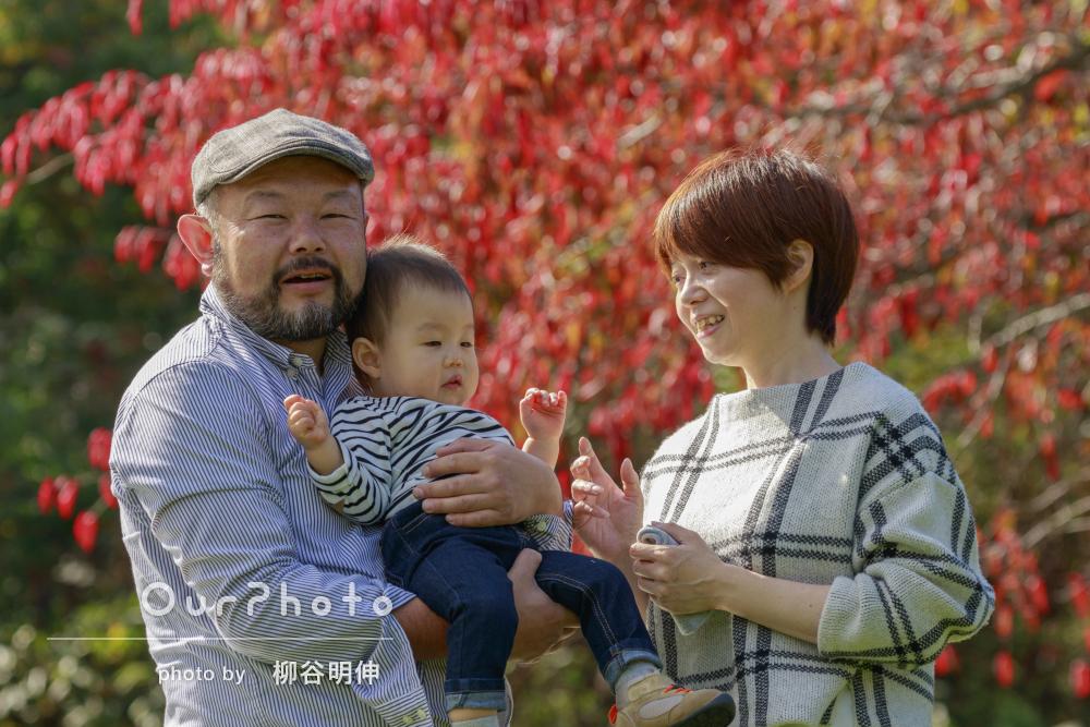 鮮やかな紅葉と秋らしい家族写真の撮影