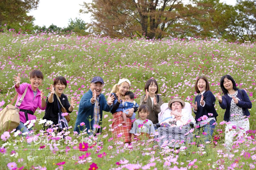 一面のコスモス畑で和やかに!家族写真の撮影