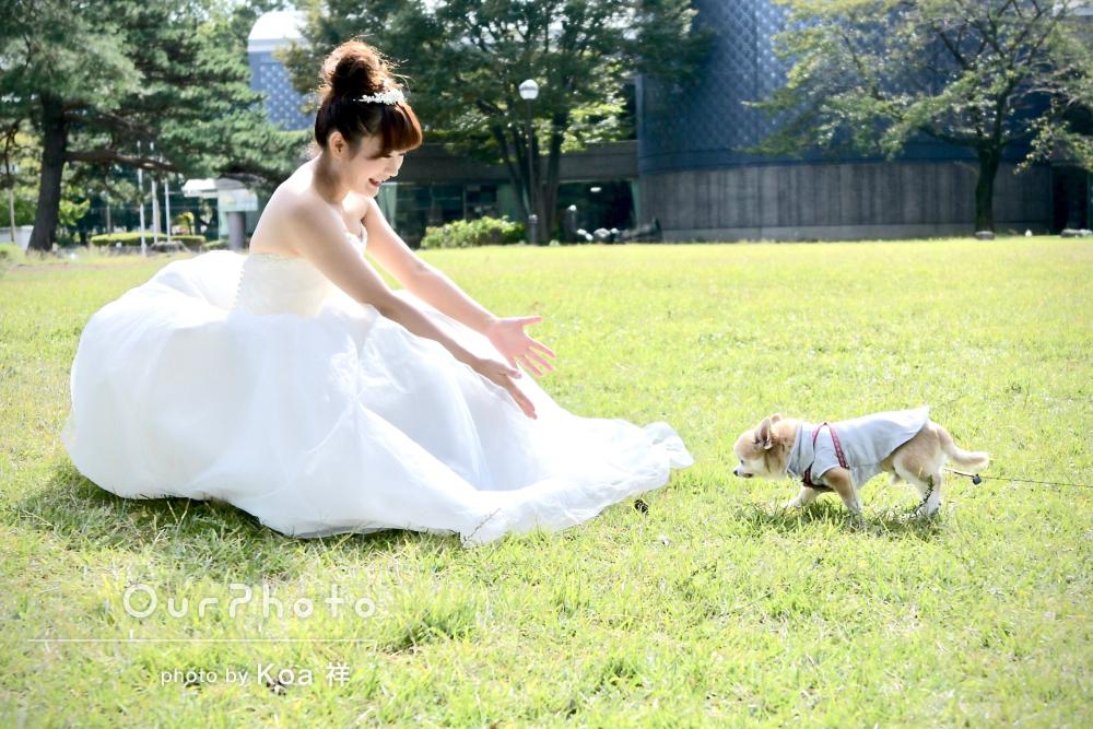 ペットのワンちゃんも一緒に!公園でウェディングフォト撮影