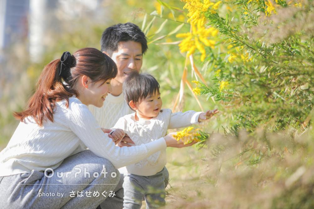 「ふんわり優しいイメージの写真が撮りたい!」家族写真の撮影