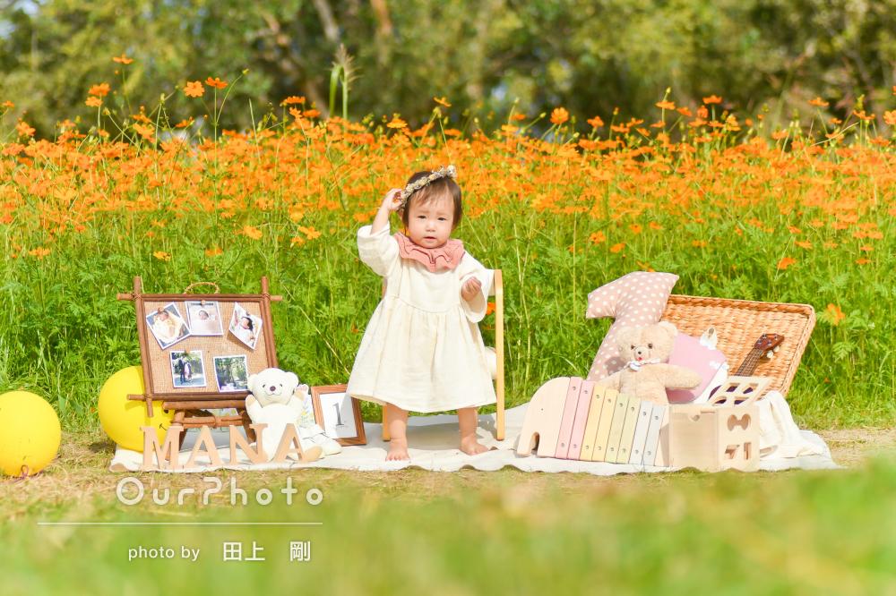 満開のコスモスと!秋らしさいっぱいの1歳バースデーフォト出張撮影