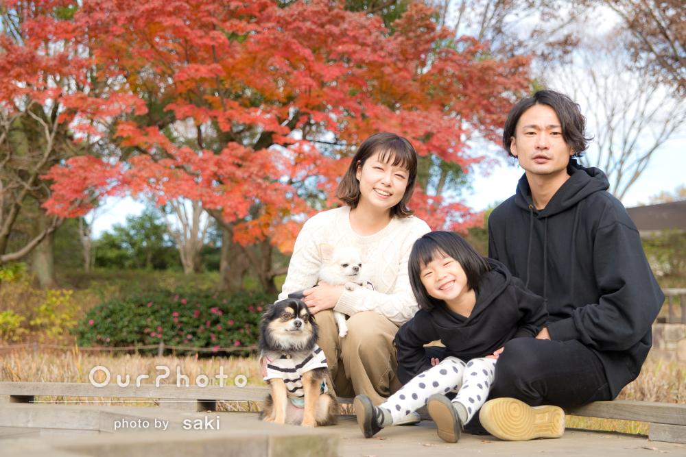 「とてもいい記念になりました」年賀状にも使える秋の家族写真