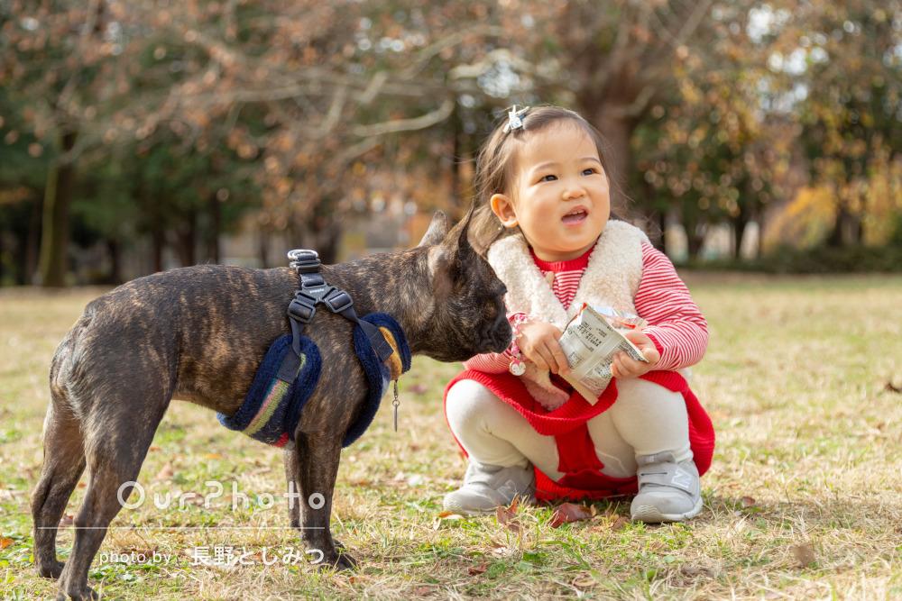 「公園で娘と犬との家族写真を撮影していただきました」初めての出張撮影