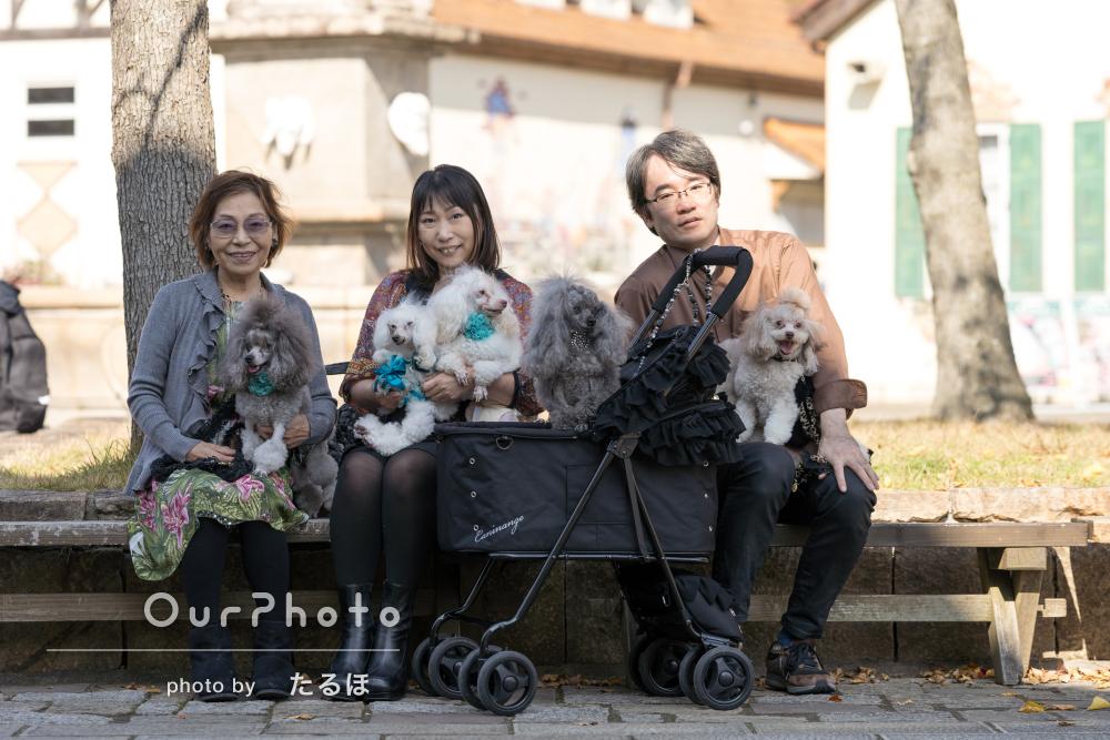 6匹の愛犬たちと一緒に家族旅行!お出かけ先での記念写真の撮影