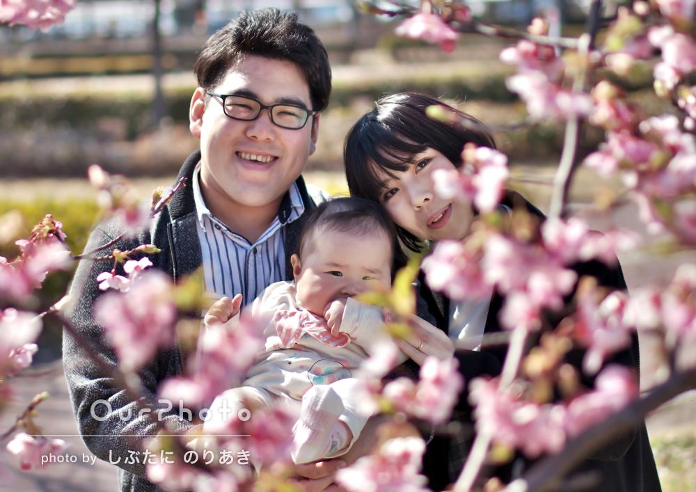 素敵な写真で感激!初めての家族記念写真、梅がきれいな公園で撮影