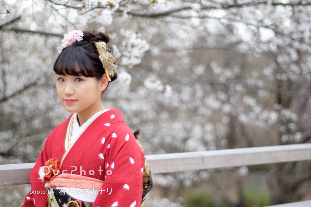 大人の階段登る振り袖も華やかな桜の成人式前撮り写真