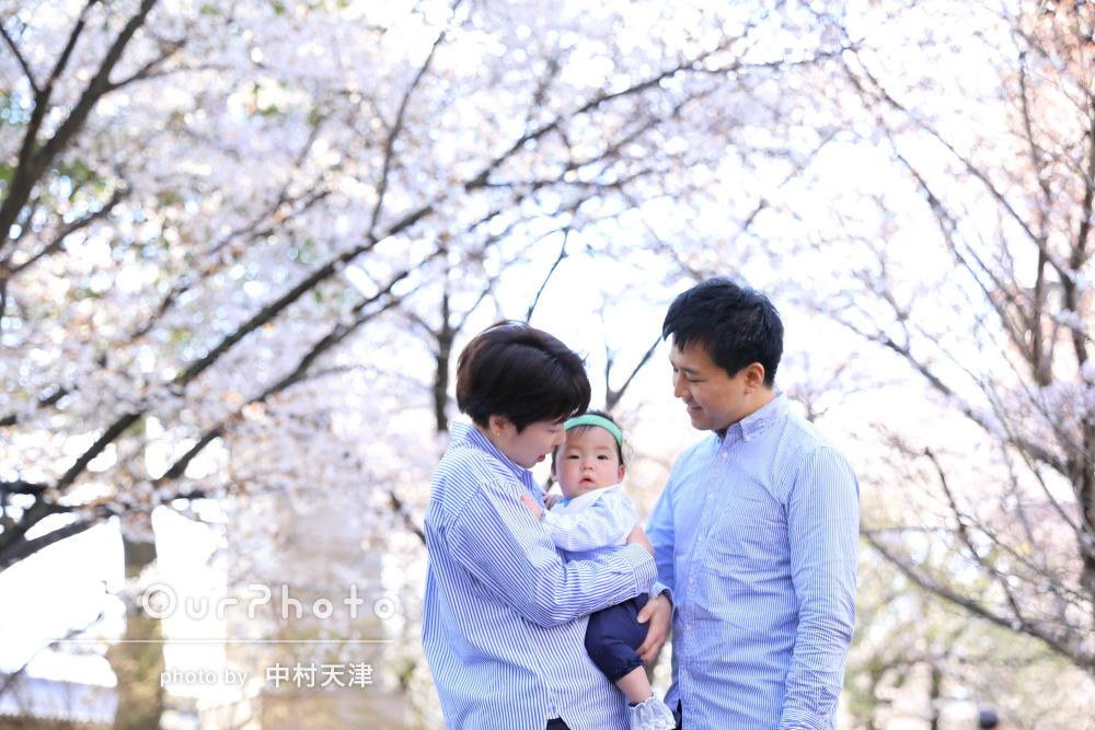 親子3人で京都での記念撮影をお願い!桜のカジュアルフォト