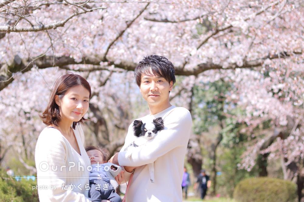 「とても可愛い写真が撮れていて満足です!」桜の家族写真の撮影