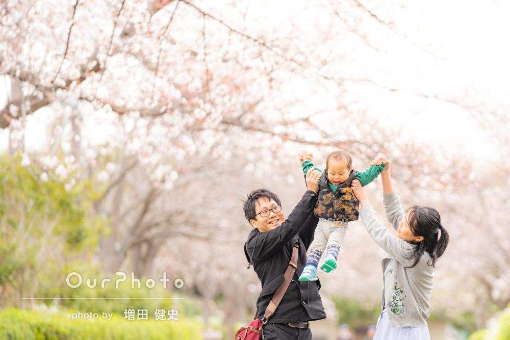 「曇りだったとは思えない温かみのある写真」桜の下で家族写真の撮影