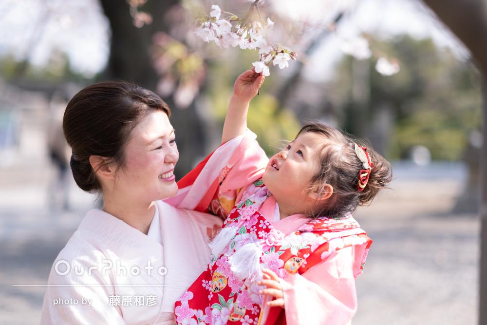 桜が満開の神社で、親子の絆を感じる七五三の前撮り