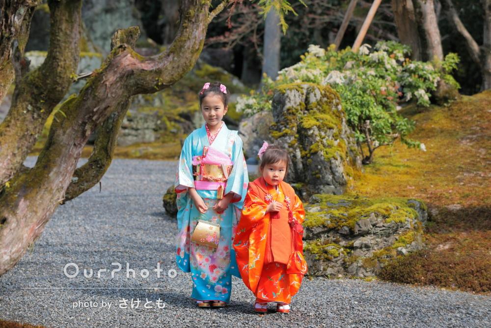 桜と色あざやかな庭園でしっとり絵になる七五三写真の撮影