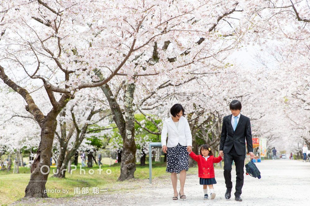 「桜の下で撮りたいという希望を叶えてくれました」入園記念の家族写真
