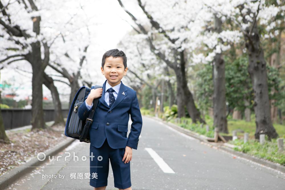 兄妹そろって入園入学!桜満開の入園入学記念撮影
