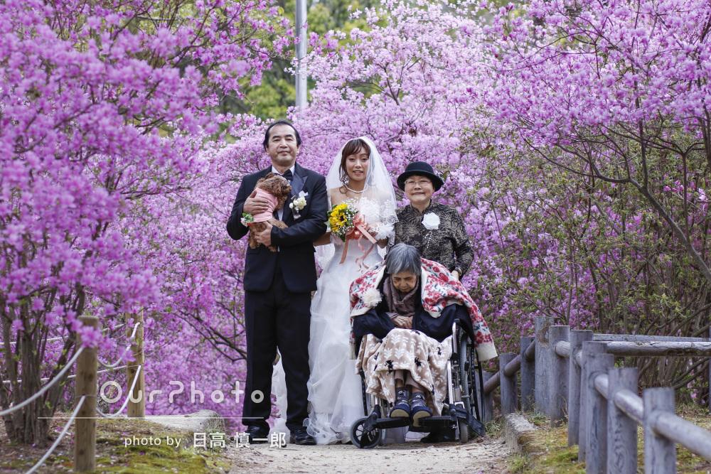 「ツツジと桜をバックに最高の仕上がりでした」ウェディングフォトの撮影
