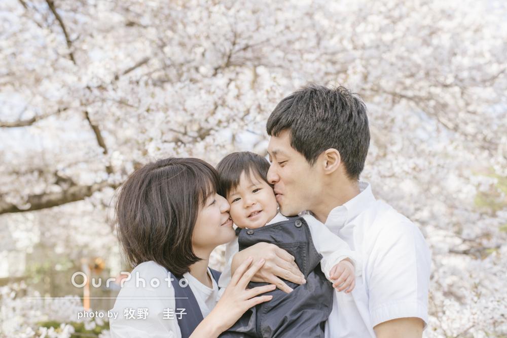 キラキラと笑顔あふれて!春のやさしい陽ざしの中の家族写真の撮影