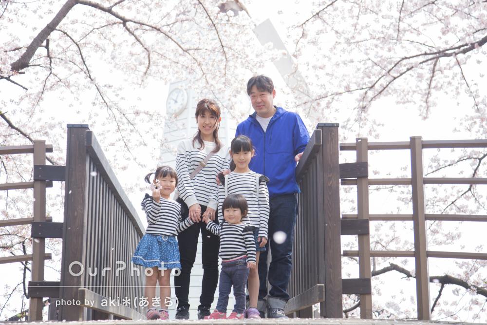 春の花々の中で、温かく優しい家族写真の撮影