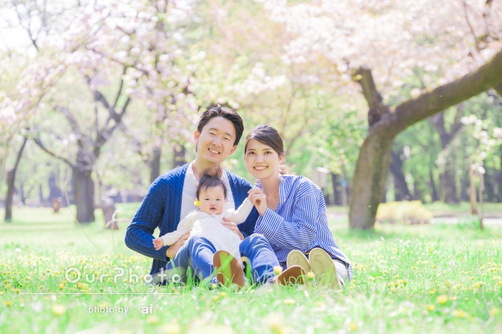 「想像以上の素敵な写真」春爛漫!桜満開のハーフバースデイ記念写真