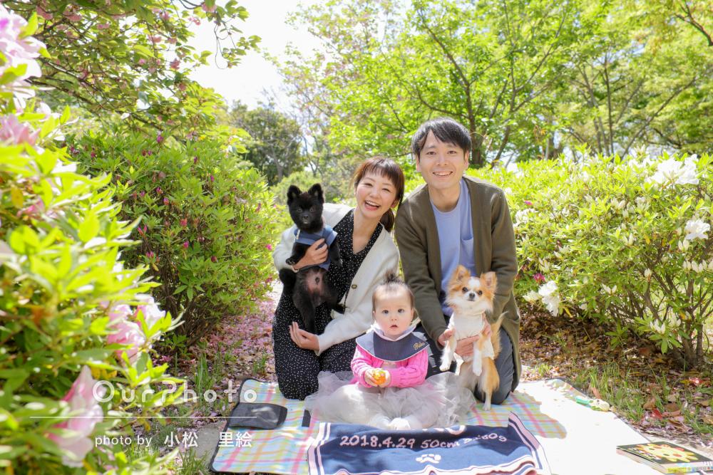 ワンちゃんも一緒に!春の公園で1歳誕生日記念の家族写真